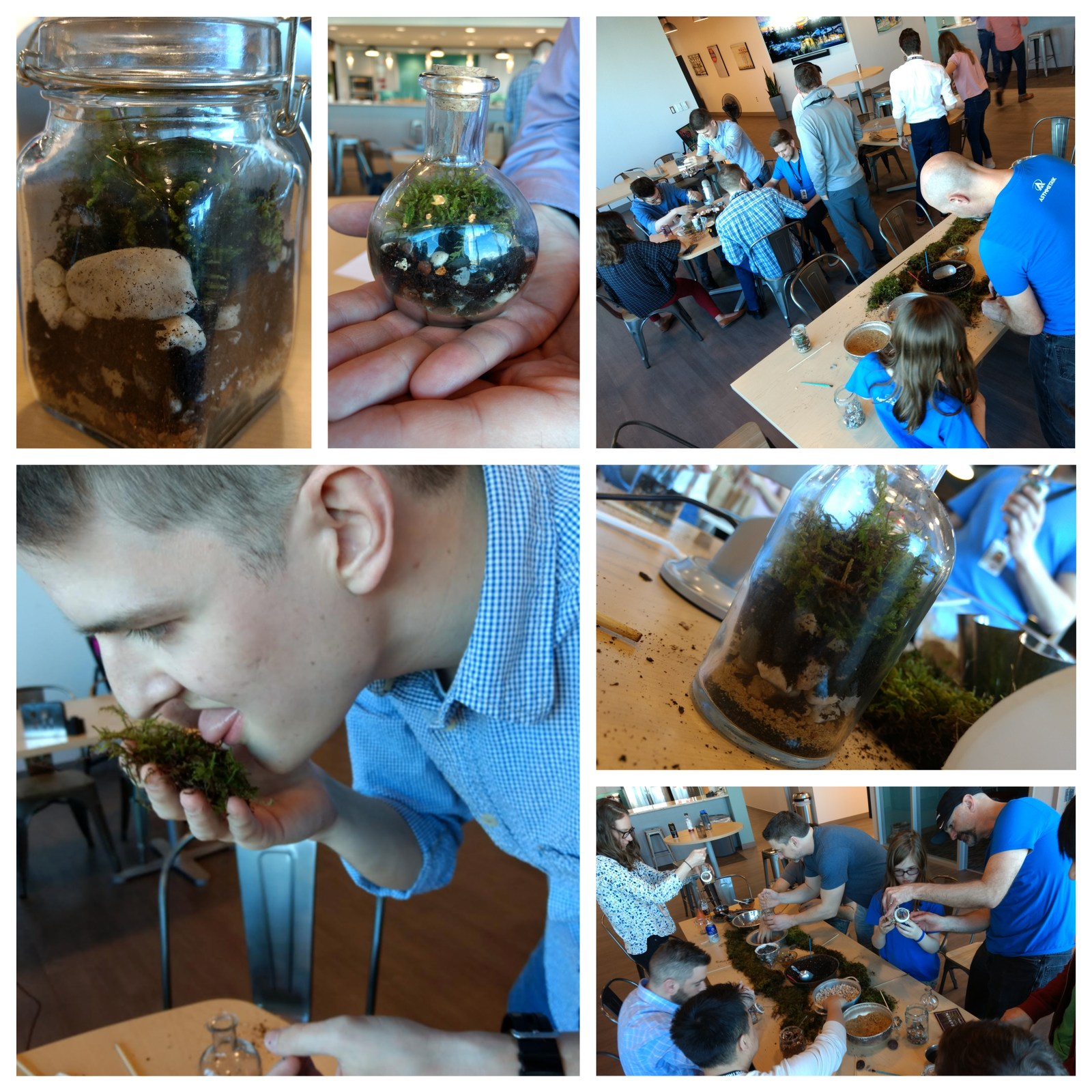 Adults and children making terrarium